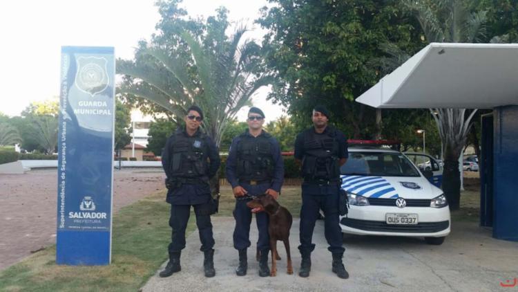 As vagas para Guarda Civil Municipal são as mais concorridas - Foto: Divulgação | Guarda Municipal