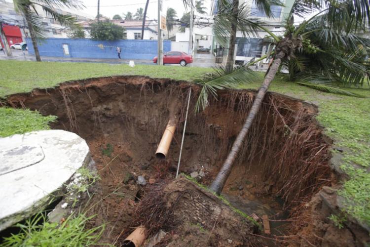 A tubulação foi rompida após a queda do coqueiro - Foto: Raul Spinassé | Ag. A TARDE