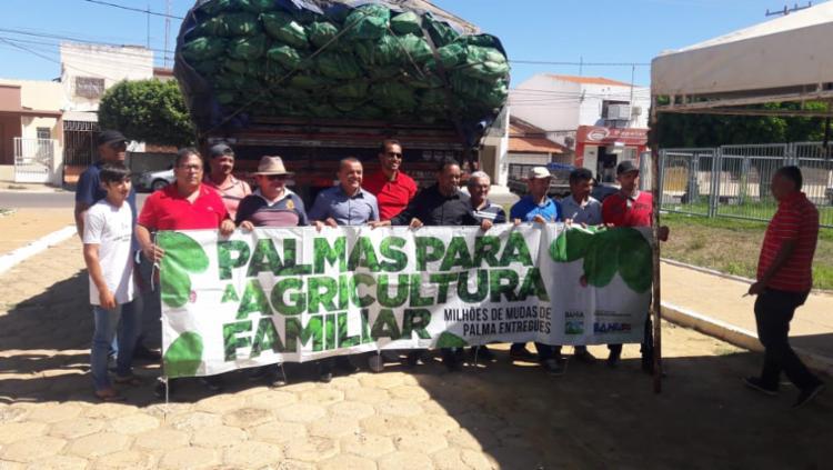 Mais de 20 mil agricultores familiares do Semiárido estão sendo beneficiados com a palma forrageira - Foto: Divulgação