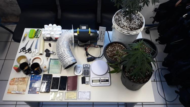 Além das drogas sintéticas foram encontrados pés de maconha, haxixe, porções de cocaína - Foto: Divulgação | SSP