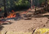 Quilombo em Lauro de Freitas é invadido e tem casa incendiada | Foto: Cidadão Repórter | Via WhatsApp