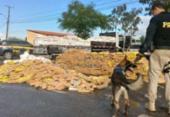 Mais de 6 toneladas de drogas foram apreendidas no primeiro semestre | Foto: Divulgação | PRF