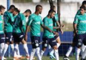 Avião do Palmeiras não pousa e tem rota desviada | Divulgação | Palmeiras