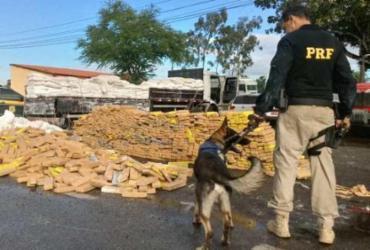 Mais de 6 toneladas de drogas foram apreendidas no primeiro semestre | Divulgação | PRF