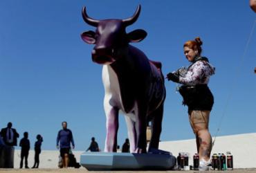 Artista baiana, Sita Katia, grafitou a primeira vaca ao vivo - Raul spinassé | Ag. A TARDE