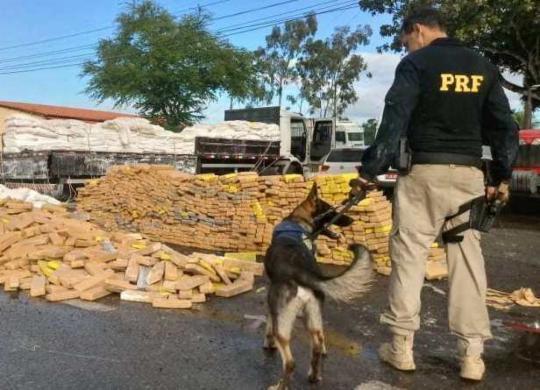 Mais de 6 toneladas de drogas foram apreendidas na Bahia | Divulgação | PRF