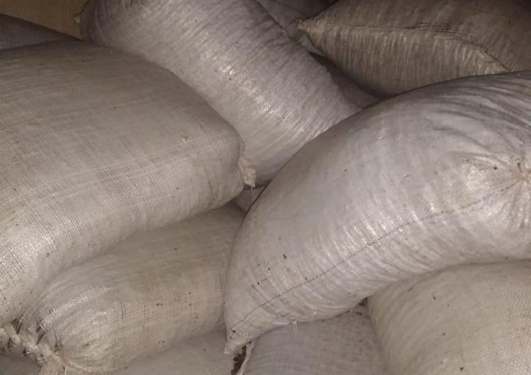 carga recuperada estava dividida em 227 sacos - Foto: Divulgação I SSP