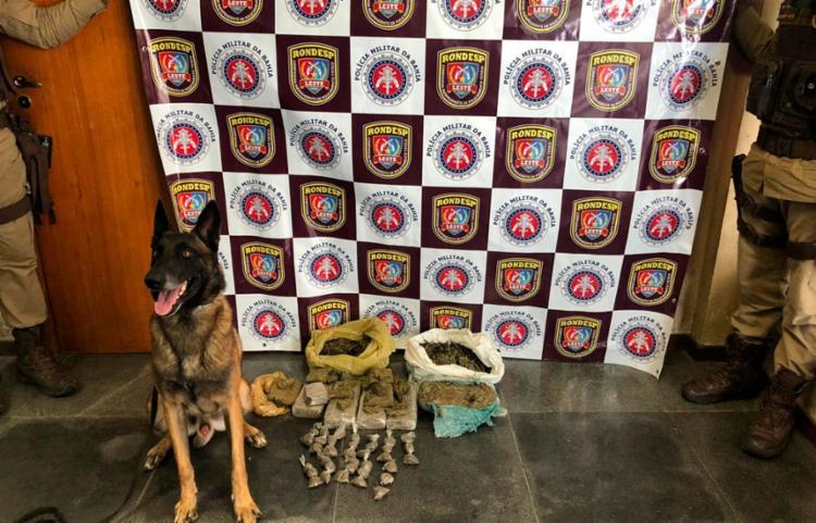 O cão farejador encontrou cerca de 9 kg de maconha em um matagal - Foto: Divulgação | SSP
