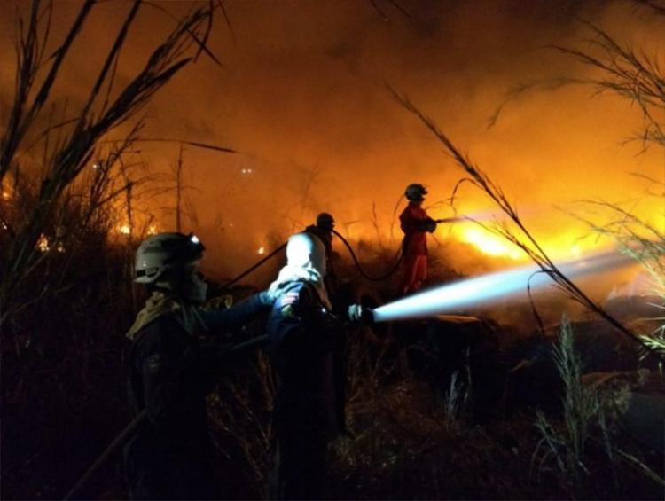 Operação para debelar o fogo precisou ser montada em duas linhas de combate