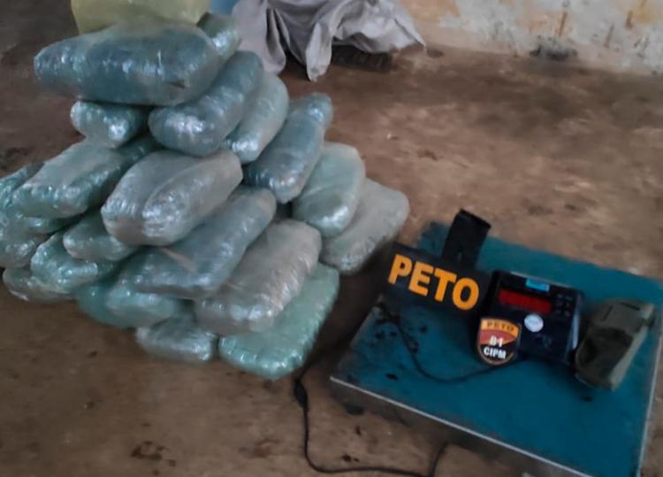 Polícia informou que a droga seria distribuída na localidade do Caji - Foto: Divulgação | SSP-BA