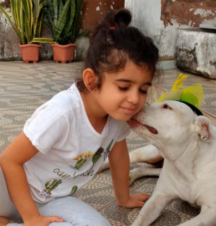 Adotada pela secretária Maíra, a Pit Bull Branca adora humanos e se dá bem com a sobrinha de cinco anos de seu irmão