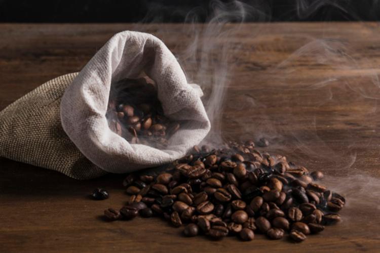 O Nordeste perde apenas para a região Sudeste, na lavoura de café arábica - Foto: Divulgação   Freepik