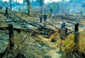 Queimadas na Amazônia: Salvador e outras 18 capitais recebem atos | Foto: Divulgação | BPA