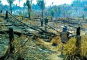 Salvador recebe ato em defesa da Amazônia | Divulgação | BPA