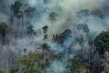 Governo envia reforço de aeronaves para combater queimadas | Victor Moriyama | Greepeace | AFP