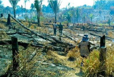 Queimadas na Amazônia: Salvador e outras 18 capitais recebem atos | Divulgação | BPA