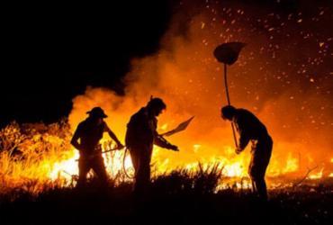 Ibama vai contratar brigadas para prevenir e combater incêndios | Ministério do Meio Ambiente | Divulgação