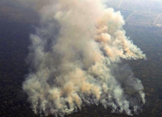 Quatro estados pedem ajuda das Forças Armadas para combate a incêndios | Carl de Souza | AFP