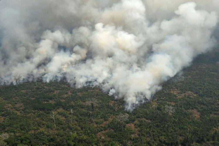 Novo decreto permite a realização de queimadas em razão de