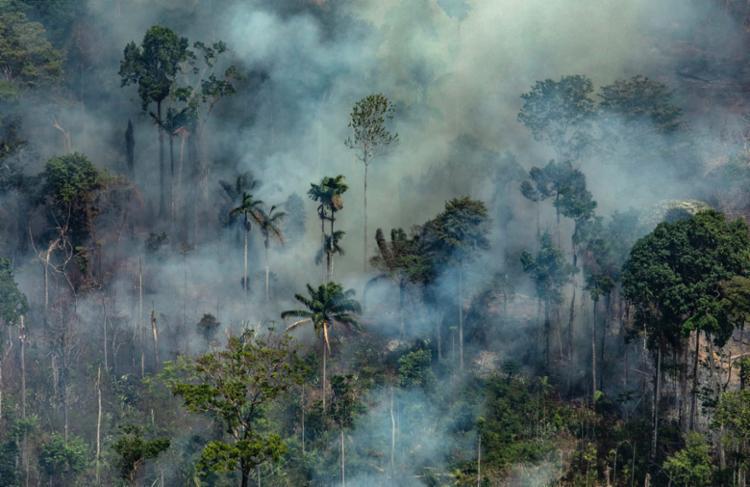 Além disso, foram enviados 30 bombeiros da Força Aérea Brasileira (FAB) - Foto: Victor Moriyama   Greepeace   AFP