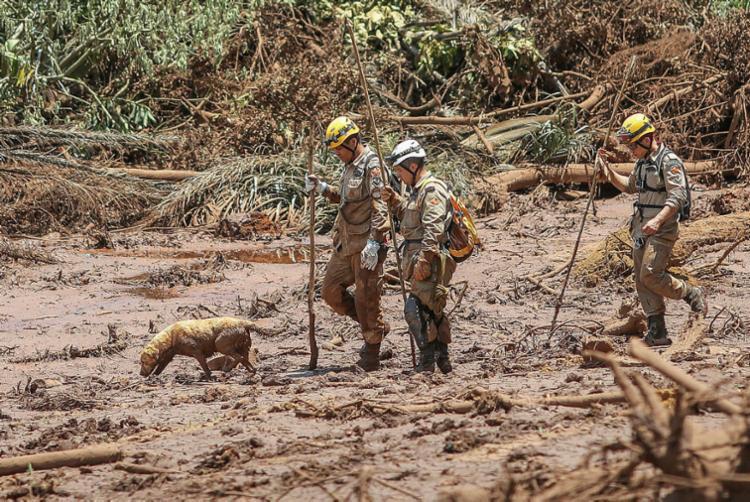 Mais de 150 bombeiros ainda trabalham na região do desastre - Foto: Ricardo Stuckert | Divulgação