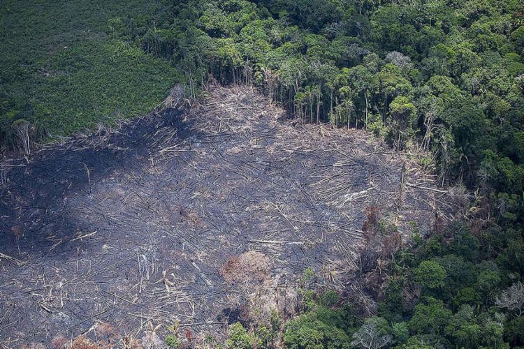 As perguntas foram enviadas aos ministros Ricardo Salles (Meio Ambiente) e Marcos Pontes (Ciência e Tecnologia); o governo tem 10 dias para responder - Foto: AFP