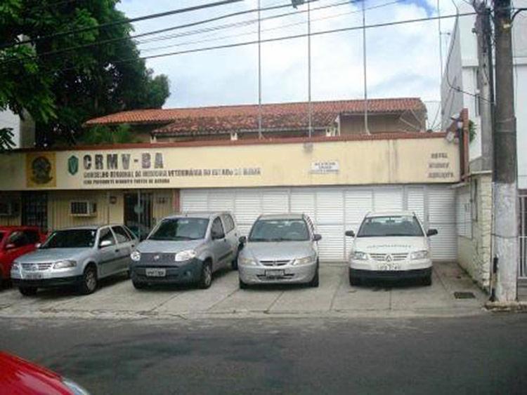 Condenação é resultado de uma representação formulada pelo Conselho Regional de Medicina Veterinária do Estado da Bahia (CRMV-BA) ao Ministério Público Estadual - Foto: Divulgação