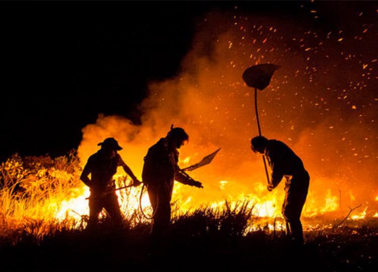 Brigadistas temporários serão contratados para as ações de combate a incêndios florestais - Foto: Ministério do Meio Ambiente | Divulgação