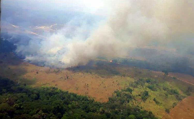 Investigações mostram que o grupo já derrubou e tocou fogo em mais de 5 mil quilômetros de mata - Foto: Divulgação | Agencia Pará
