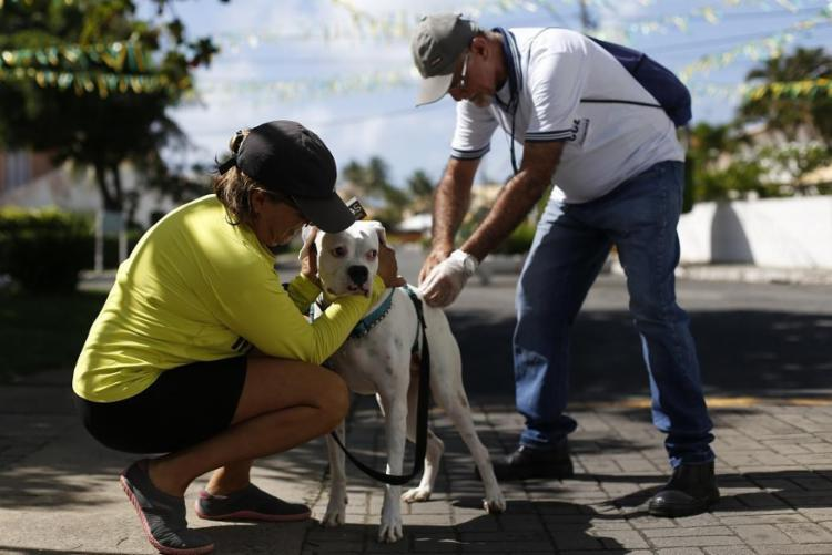 A ação será realizada durante Feira Cidadã, no largo do Papagaio, bairro da Ribeira - Foto: Raul Spinassé   Ag. A TARDE