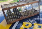 Homem é detido por manter aves silvestres em gaiola | Divulgação | PRF