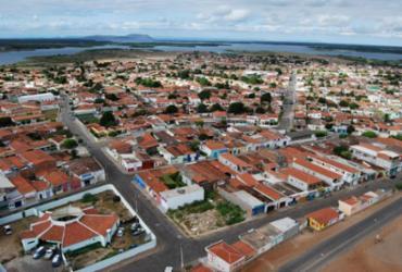 Casa Nova é líder em ovinos e caprinos   Reprodução l todabahia.com.br