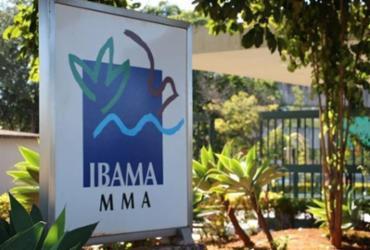 Ibama e ICMBio podem ficar sem verba até dezembro | Divulgação