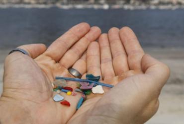 Pesquisas indicam ingestão de microplásticos por humanos |