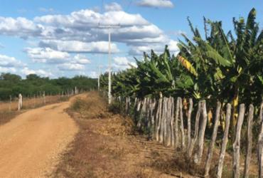 Produtores do Vaza Barris terão energia elétrica