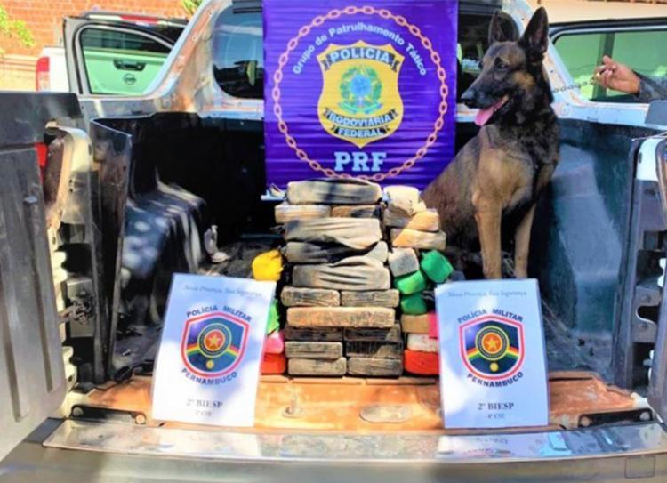 Com auxílio de cão farejador, droga foi descoberta em um compartimento oculto do veículo - Foto: Divulgação | PRF