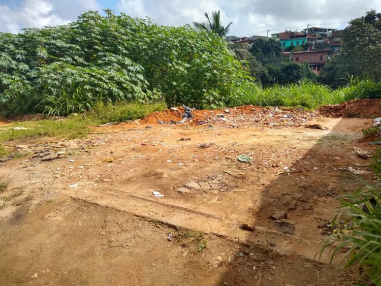 Corpos foram encontrados com marcas de tiros em área aberta - Foto: Divulgação | SSP