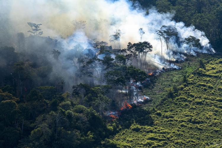 Balanço do 1º mês de ações das Forças Armadas na Amazônia mostra redução de 25,1% no incêndias - Foto: Daniel Beltra l Greenpeace
