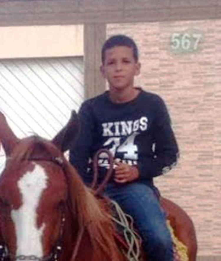 Animal teria caído por cima da criança - Foto: Divulgação | Bolg do Ril de Beto