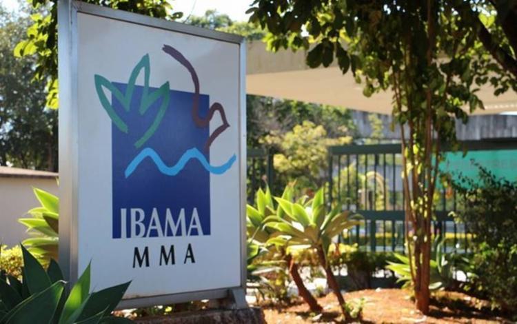 Restam para as ações de fiscalização do Ibama até o fim do ano pouco menos de R$ 19 milhões - Foto: Divulgação