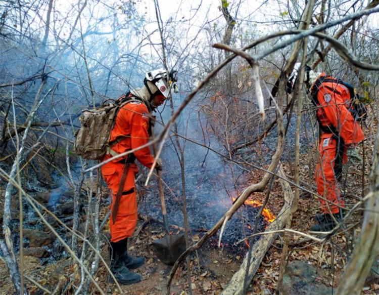 Equipes monitoram a serra para evitar novos focos - Foto: Divulgação | CBMBA