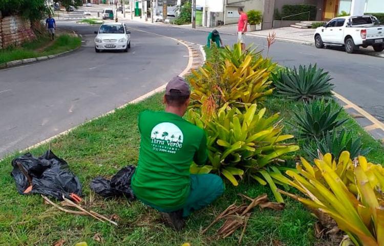 Paisagista explicou que é um trabalho constante e necessita de manutenção semanal - Foto: Divulgação | Alex Sá Gomes