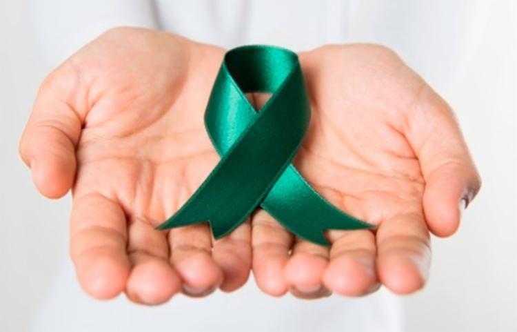 Sesab está promovendo diversas ações no Setembro Verde - Foto: Reprodução | Uol