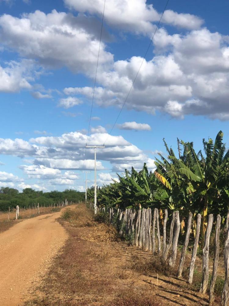 A ação vai beneficiar produtores rurais, que antes irrigavam suas produções utilizando motores a óleo diesel com altos custos e, agora, poderão utilizar sistemas de irrigação automatizados. - Foto: Divulgação