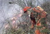 Incêndio atinge vegetação na região de Livramento de Nossa Senhora e Rio de Contas | Foto: Divulgação I Corpo de Bombeiros Militar da Bahia