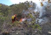 Incêndios florestais já atingiram 20 municípios neste ano, diz CBMBA | Foto: Divulgação | CBMBA