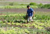 Irrigantes têm direito a desconto em conta de luz | Foto: Joá Souza | Ag. A Tarde