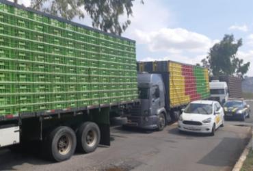 Caminhões que transportavam 10 mil aves de forma irregular são apreendidos | Divulgação | ADAB