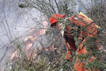 Incêndio atinge vegetação na região de Livramento de Nossa Senhora e Rio de Contas | Divulgação I Corpo de Bombeiros Militar da Bahia