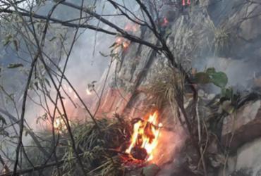 Incêndio de grandes proporções atinge Chapada da Diamantina | Divulgação | Corpo de Bombeiros da Bahia
